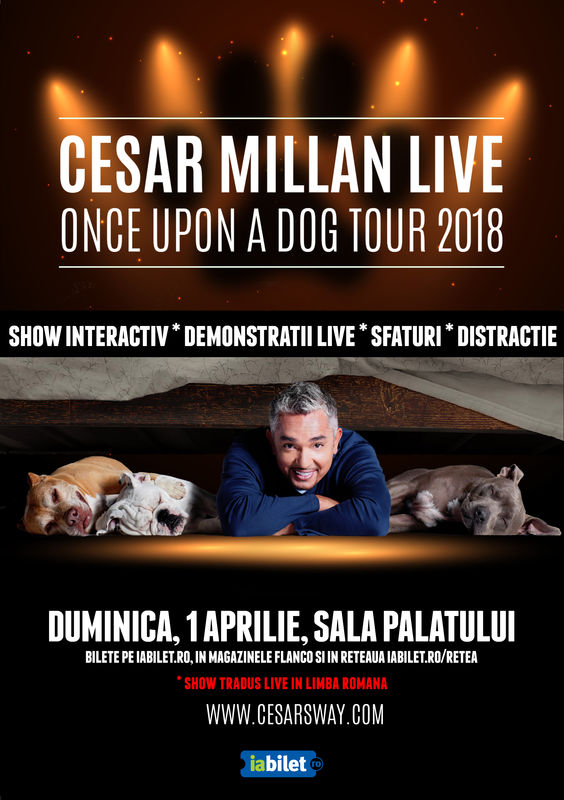 Cesar Millan Live! The Dog Whisperer revine la București!